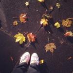 Instagram gallery: October 2014