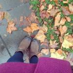 A few Autumn photos