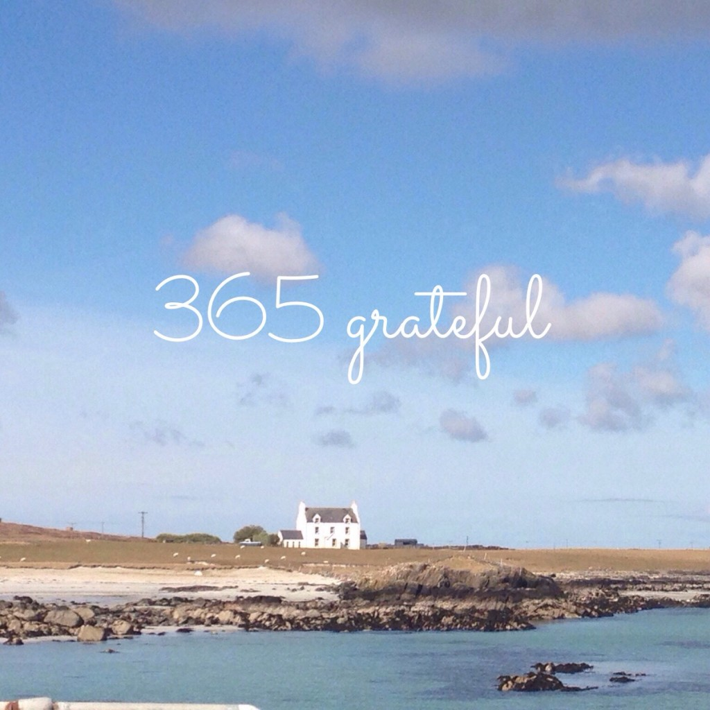 365 Grateful 2015