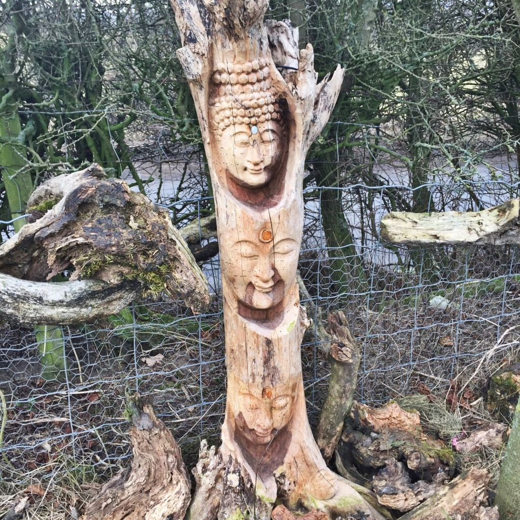 Faces carved in a tree