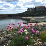 A day out in Craster