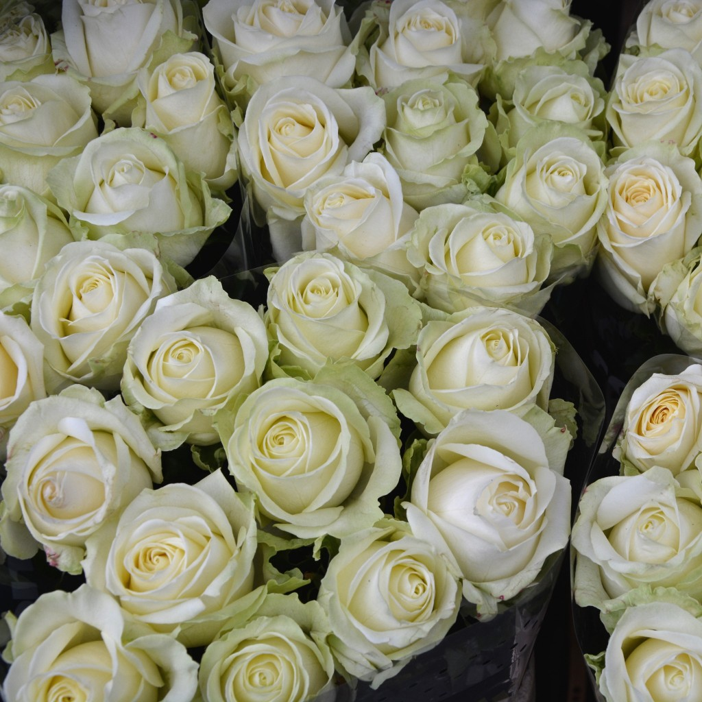 Beautiful roses from Columbia Road | Hello! Hooray!