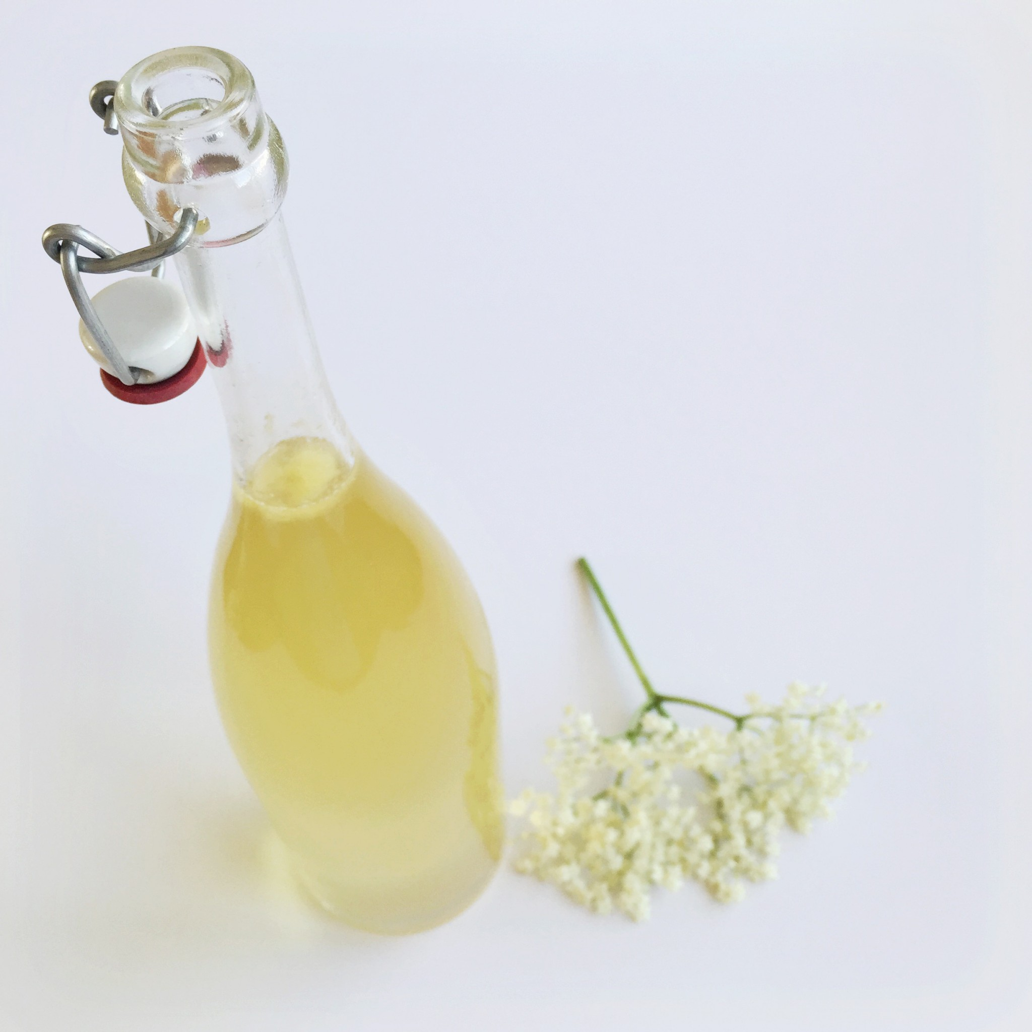 Elderflower cordial | Hello! Hooray!