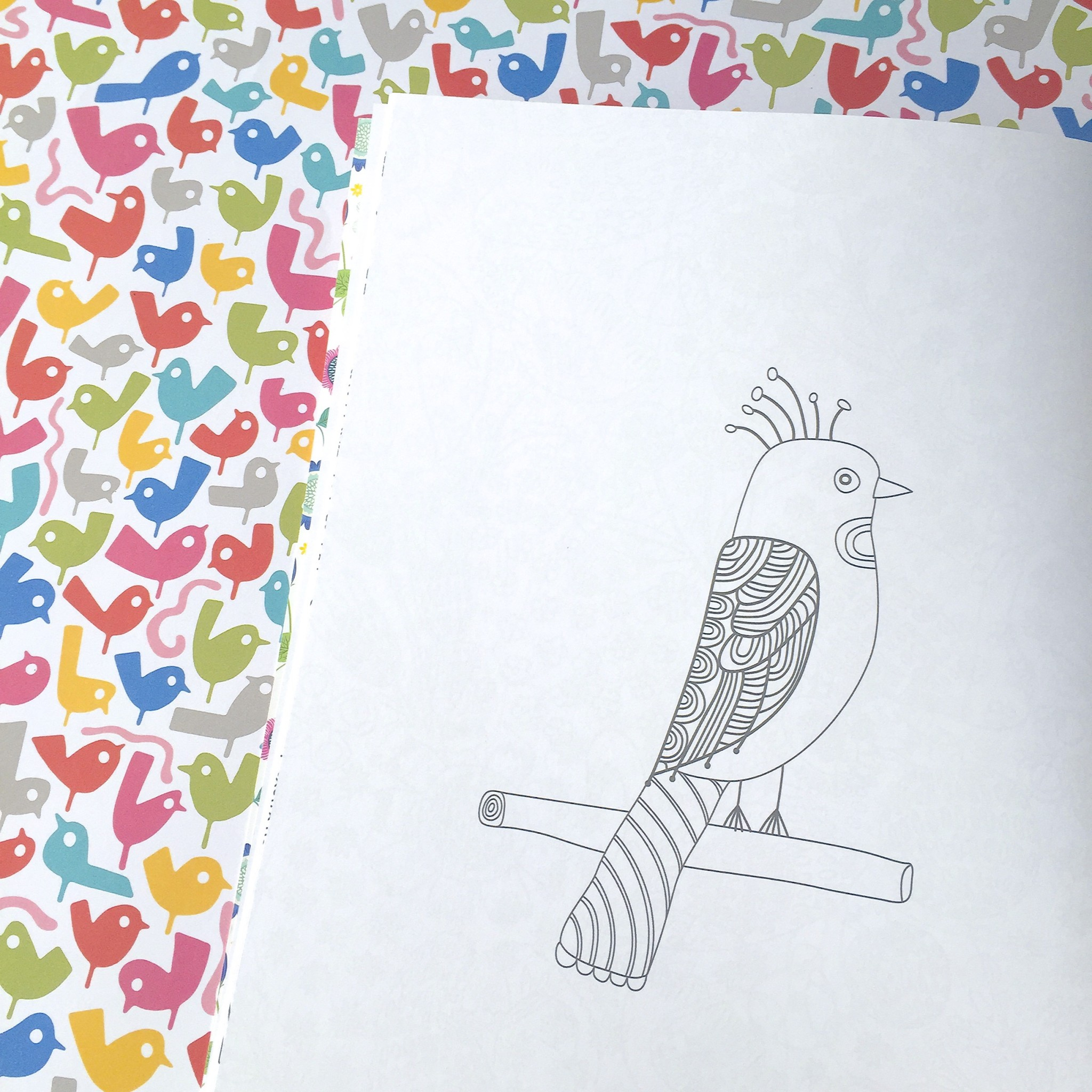 Flow colouring book | Hello! Hooray!