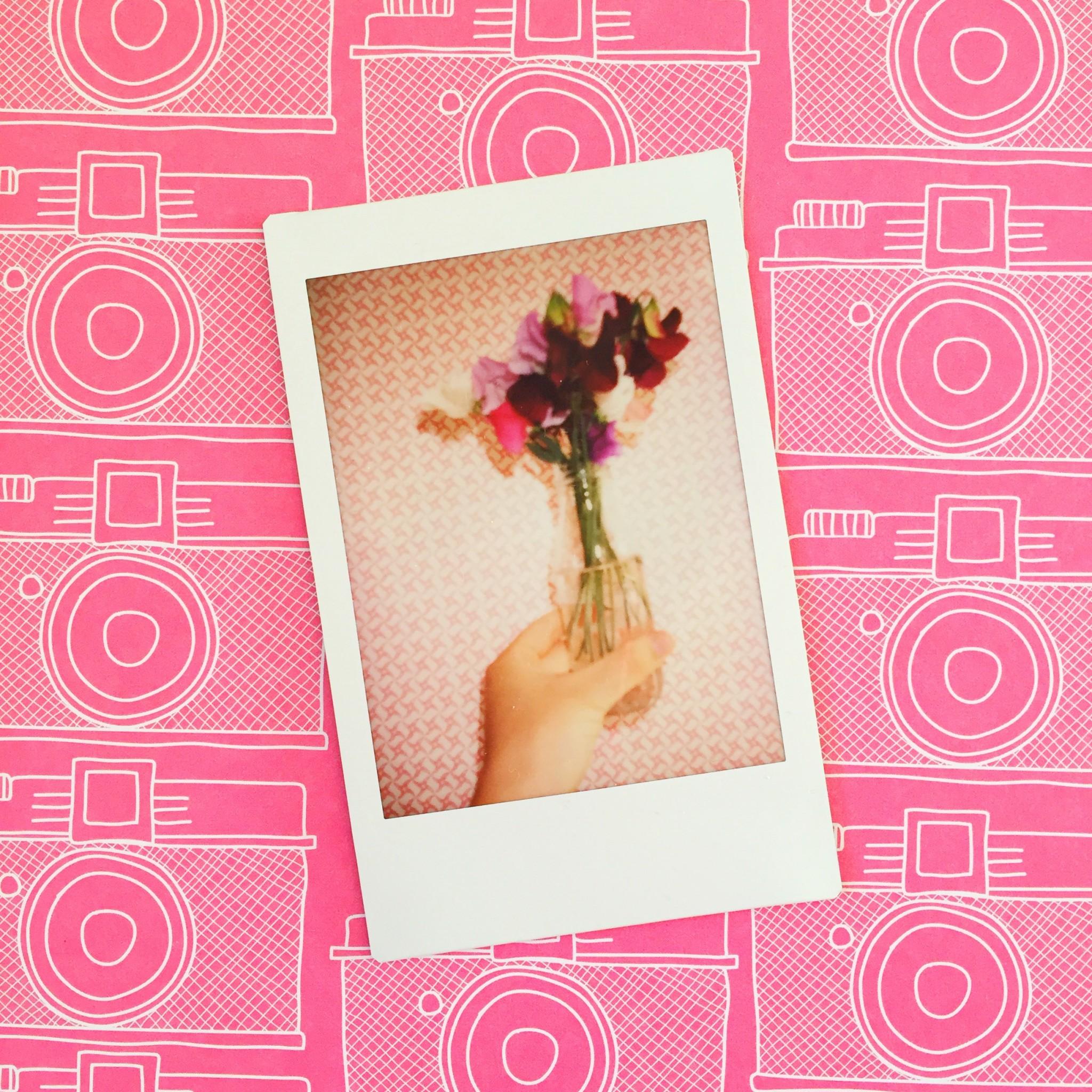 Summer polaroid pictures sweet peas | Hello! Hooray!