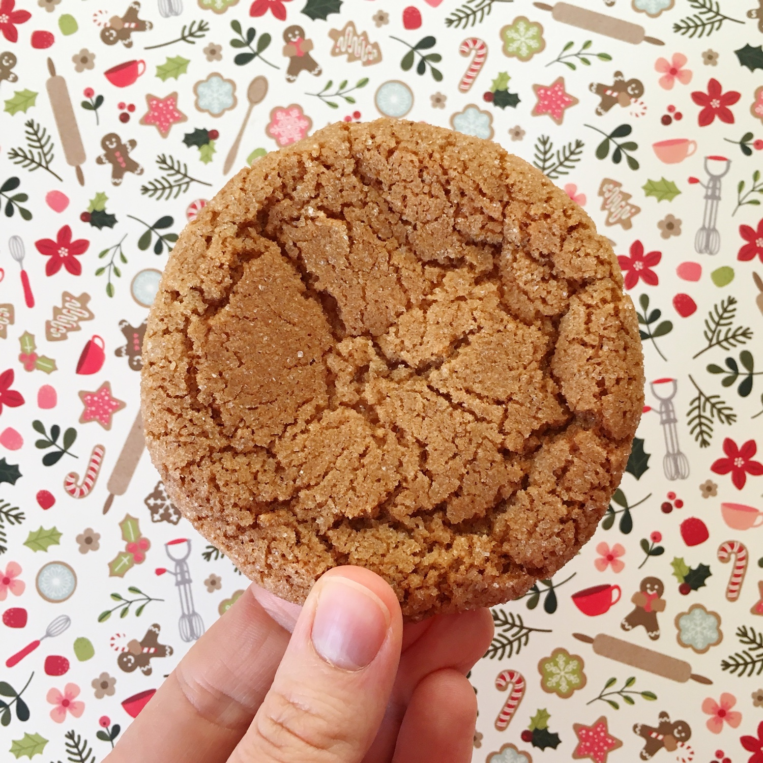 Primrose Bakery ginger sparkle cookies | Hello! Hooray!